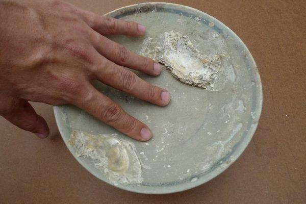 Glazed Underwater Porcelain