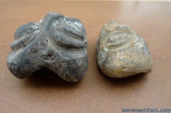 FOSSILIZEDWOOD&#;mmPLANTFOSSILSFossilOrganicPrehistoricPlantMASK