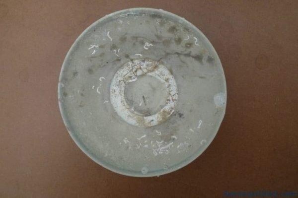 MINGDYNASTY( )DISH/BOWL/PLATEGreatMingUnderwaterArtifact#